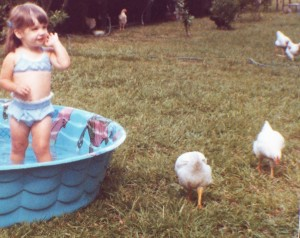 Swimming with the chicks