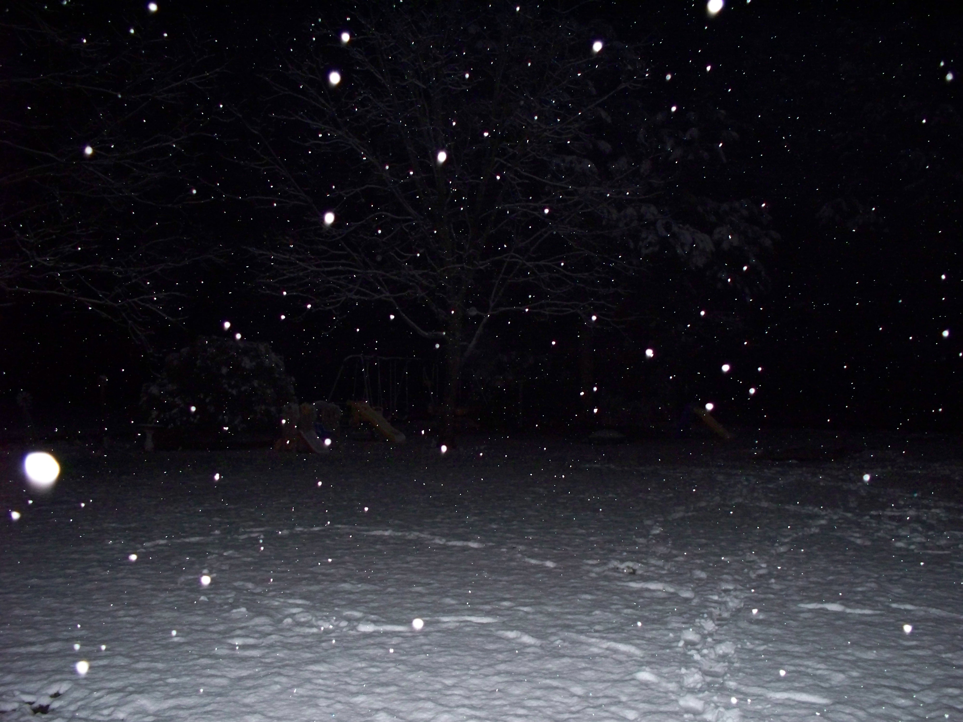 Snow at Night - Bing images