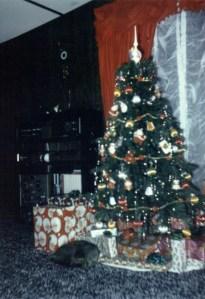 12-8-2014 9;17;58 AM old christmas pics1