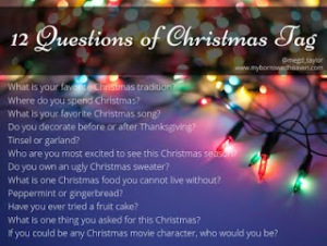 12-question-Christmas-tag